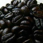 オーガニックコーヒー 生豆 200g 有機無農薬コーヒー (写真は焙煎済みですが生豆でご用意します)