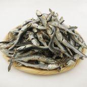 [いりこ]カタクチイワシ煮干し 上 500g 千葉県産 (約6cm / 約6g)