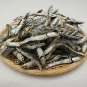 [煮干し]カタクチイワシ煮干 並 1kg 千葉県産 (約12cm / 約7g)