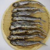 【特売】[煮干し]焼あご煮干 500g 長崎県産