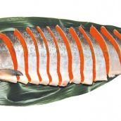 特選 カナダ産紅鮭 甘塩 半身姿切 1㎏