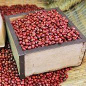 【新物】小豆(あずき) 5合(約780g) 北海道 平成30年産 新豆