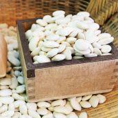【新物】白花豆 5合(約650g) 北海道 令和2年産