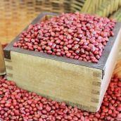 【新物】ささげ(だるまささげ) 5合(約700g) 岡山県 平成29年産 新豆