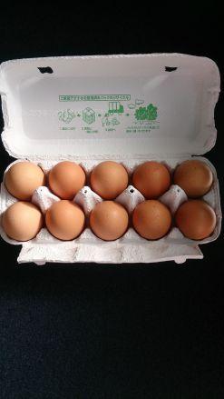 【卵】奥久慈卵 赤玉 1パック10個入 - 画像2