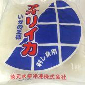 アオリイカ 刺身用 1kg