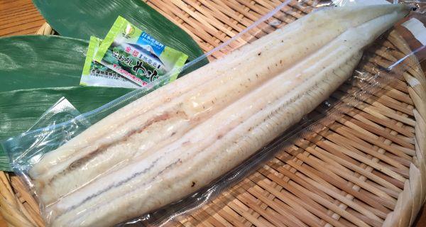 静岡県大井川産 鰻 うなぎ白焼 1枚 (約160g) - 画像1