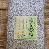 ローストひまわりの種(サンフラワーシード) 500g(アメリカ産)