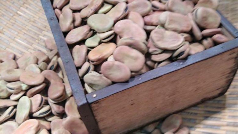 一寸蚕豆 5合(約575g)