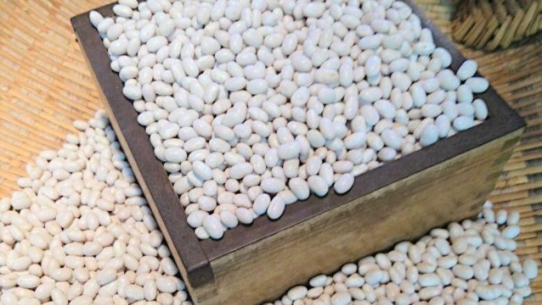 大手亡(手亡豆) 5合(約775g) 北海道 平成29年産