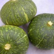 【北海道産】南瓜「ほっこりかぼちゃ」