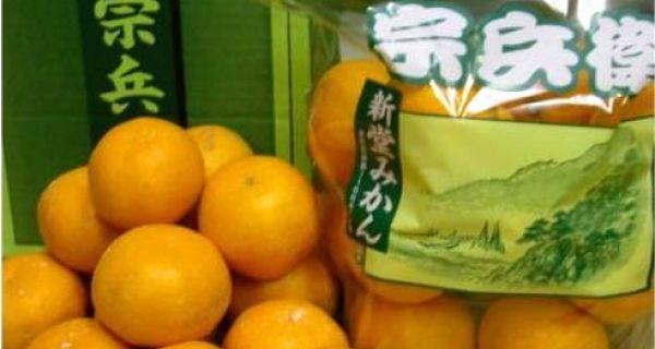 【和歌山県産】みかん「宗兵衛」1袋 2Sサイズ 1kg