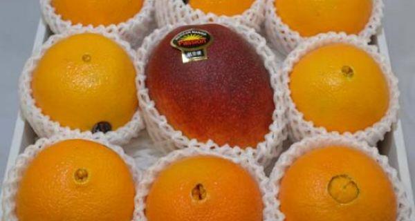 【メキシコ産】マンゴー1個・【カリフォルニア産】ピュアスペクトネーブル8個