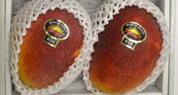 マンゴー2個・パパイヤ1個・オレンジ6個 - 画像3
