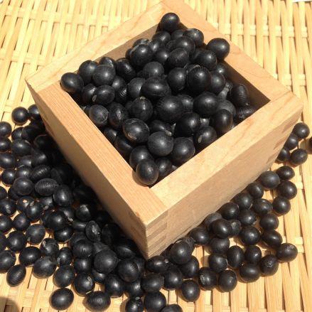 【新豆】令和1年産 北海道産 光黒大豆 500g レシピ付き! - 画像1