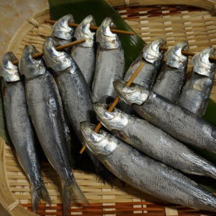 築地 めざし 1連(3匹) 焼き魚用 - 画像1