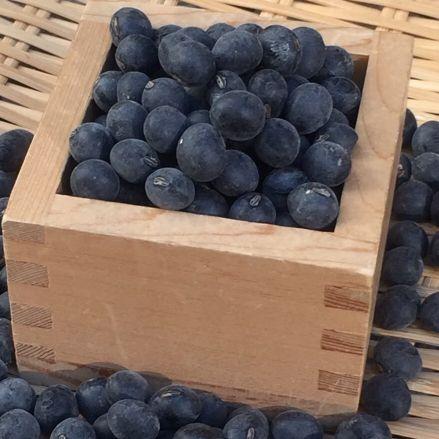 平成28年丹波篠山産黒大豆(3Lサイズ)1kg - 画像1