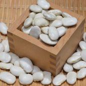 平成30年産 北海道産 白花豆 500g