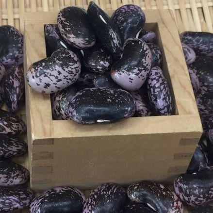平成30年産 信州特産高原紫花豆(大粒) 500g(契約栽培)