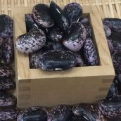 平成29年産 信州特産高原紫花豆(大粒)500g(契約栽培/無農薬/無化学肥料/有機栽培)