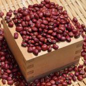 【新豆】令和1年産 岡山県産 備中特選だるまささげ 500g