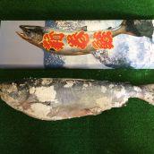 天然 極上 紅鮭 3キロ