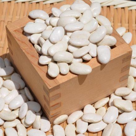 平成29年産 北海道産大福豆1kg(白いんげん豆) - 画像1