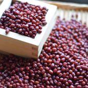 北海道産 有機小豆 むらさきわせ (JAS認証)1kg 無農薬・無化学肥料