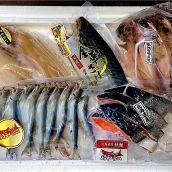 夏のご挨拶【国産・天然】北海道産秋鮭と干物の詰合せ 築地セット