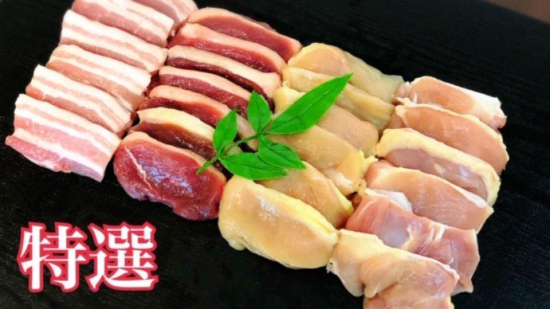 【鳥藤】特選バーベキューセット 地鶏 合鴨 豚肉 2~3人前