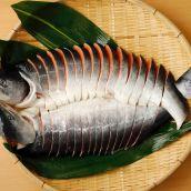 大きな時鮭【天然・北海道産】稀少品4.6kg